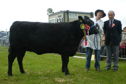 champion_clonakilty_show
